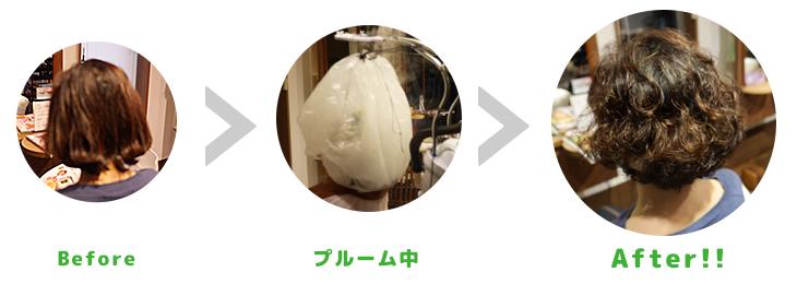 plume-perm-process